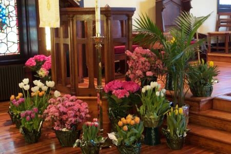 Easter flowers surround the pulpit and paschal candle